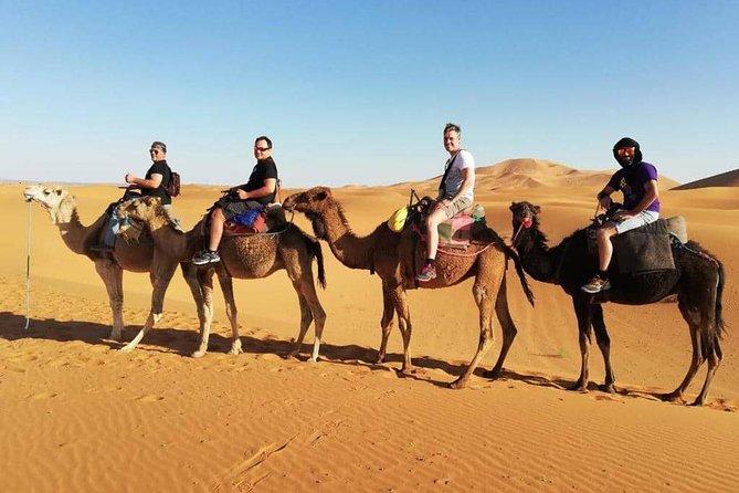 Aventura en familia por el desierto de Marrakech