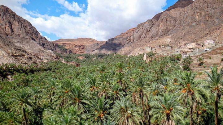 Excursión desde Marrakech: Valle de Ourika
